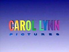 Erbe Der Lust Carol Lynn 1991 Harry S Morgan